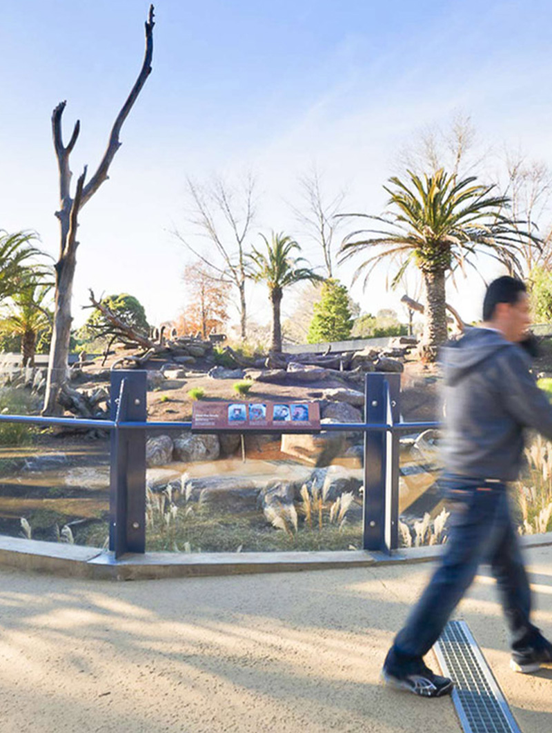 Method-Projects-Feature-melbourne-zoo