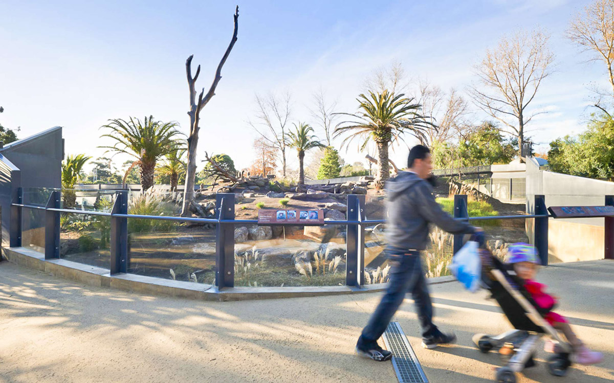 Method-Projects-Internal-landscape-melbourne-zoo-4